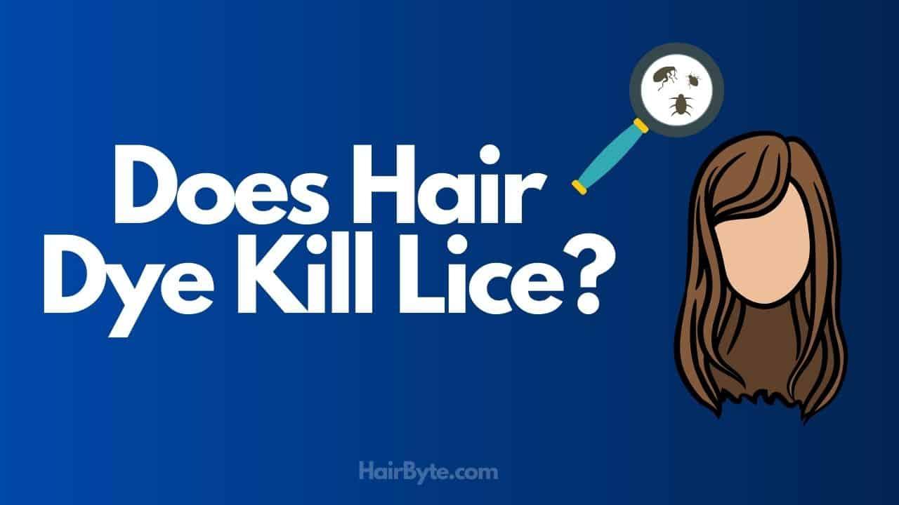 lice on hair